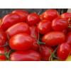 100 Sementes De Tomate Orgânico